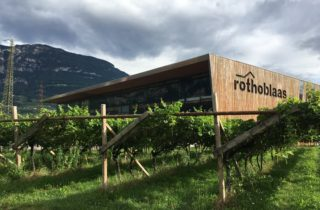 Siedziba firmy Rothoblaas, w tle góry, na pierwszym planie winnice.